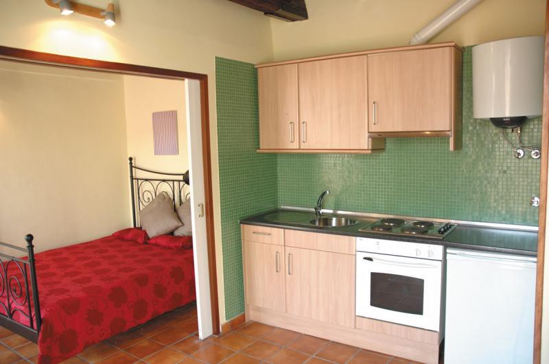 Apartments Plaza Real 32 kitchen